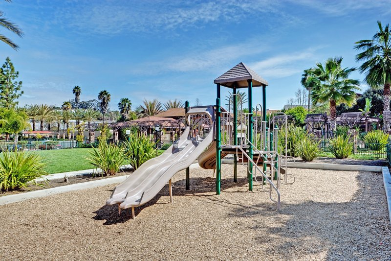 Playground: View Photo